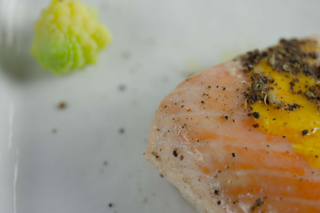 salmonromansco