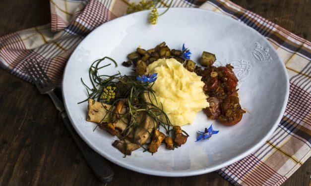Streicheleinheiten für die Seele – Kartoffelpüree mit Pfifferlingen, Kräutersaitlingen, krossen Auberginenwürfeln und Salzkraut
