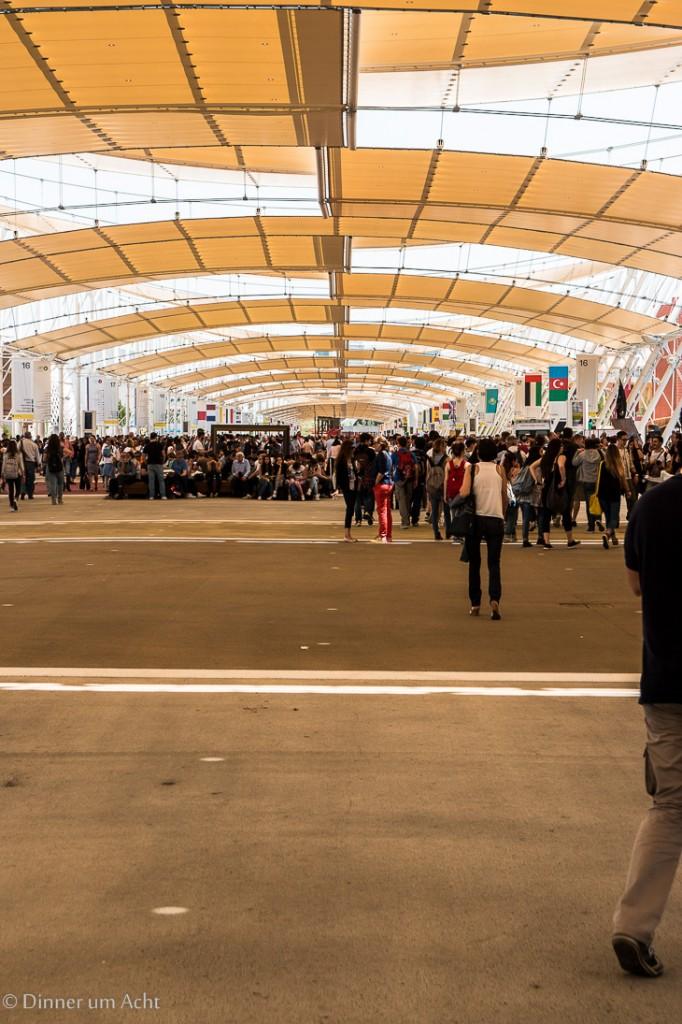 Expo Milano 2015-1-7