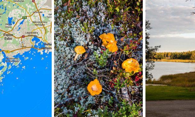 Kulinaarinen Suomi – Finnland kulinarisch (Teil 1)