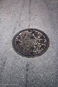 Okinawa-1-7