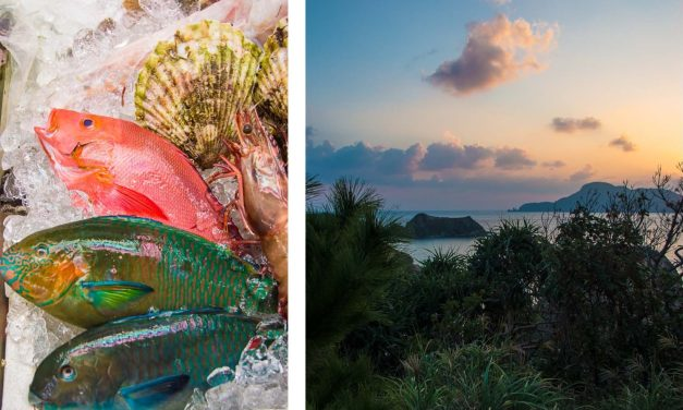Auf nach Okinawa!   <br/> türkisfarbener Pazifik, Fischmärkte und wo Hirsche nachts an weißen Sandstränden spazieren gehen