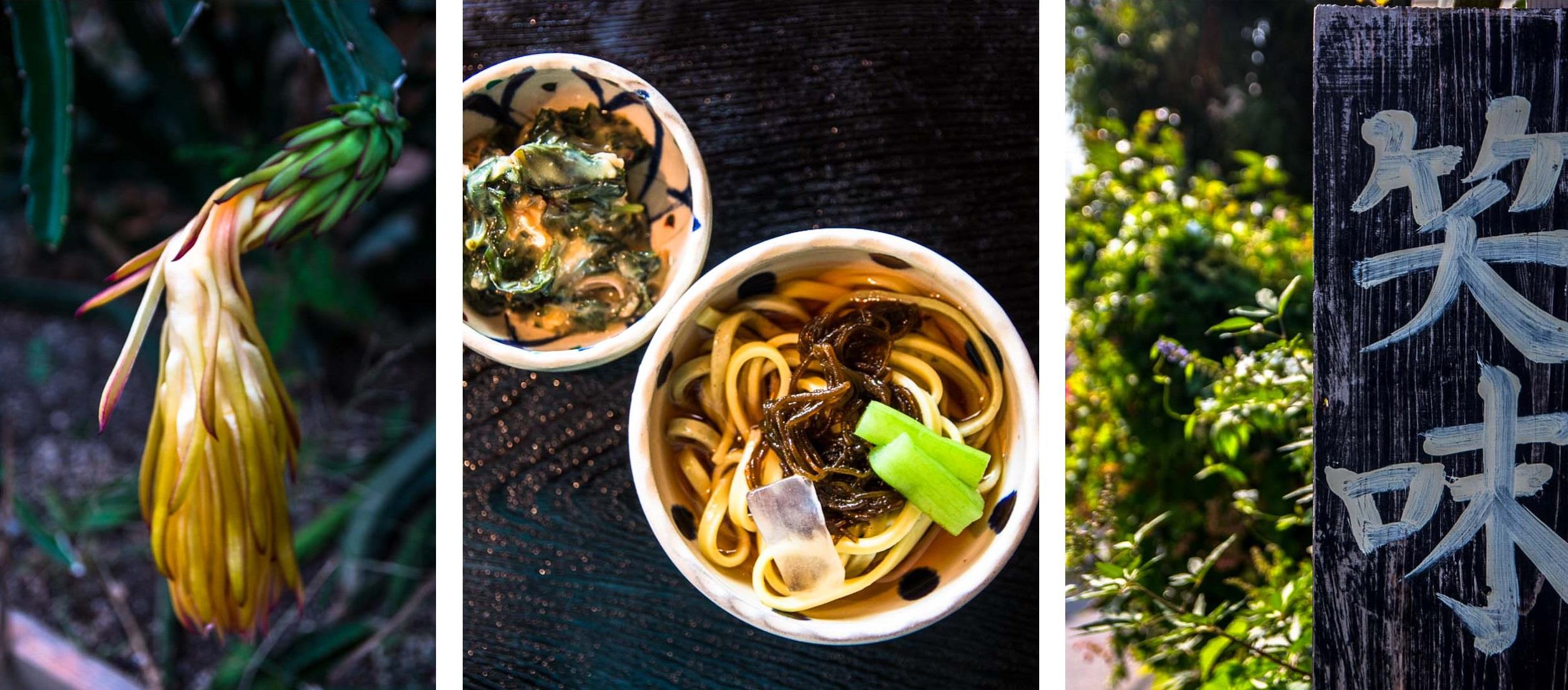 Auf nach Okinawa! Awamori, das königliche Getränk, das Dorf der Hundertjährigen und eine Slow Farm mit schwarzen Schweinen