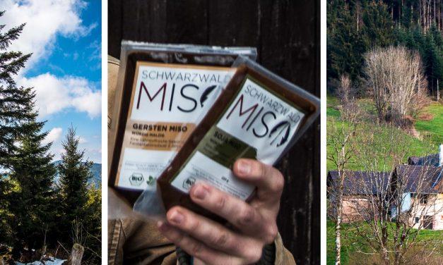 Wie ein japanischer Zen Meister das Miso in den Schwarzwald brachte und warum es dort eine neue Heimat gefunden hat