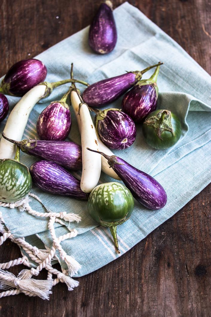 aubergines-1-5