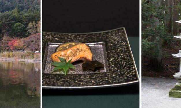 [Komagane] die erste Nacht in einem Ryokan, ein verzauberter Tempel im Wald und Miso ohne Ende