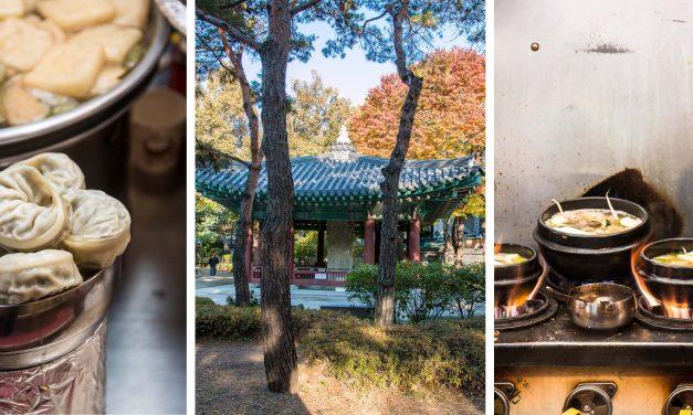 [Seoul] – eintauchen in Kimchi, Hotpots und Bibimbap auf den besten Foodmärkten der Stadt