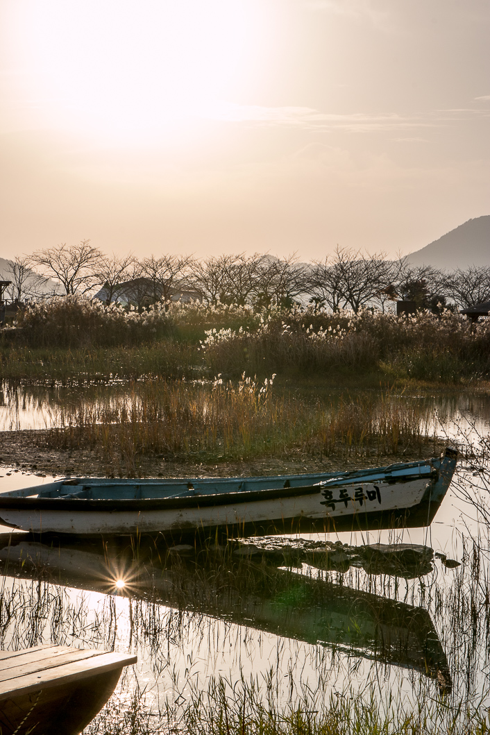 Suncheon Bay-1-2