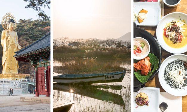 [Südkorea] Hansik Küche in Süd Jeolla, Ansturm im Schilf der Suncheon Bay und Jubel – es gibt Jujube Tee!