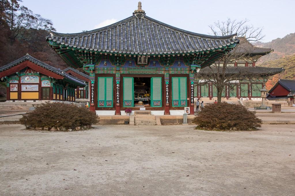 wetlands korea-4