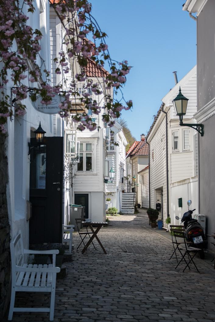 Bergen-15