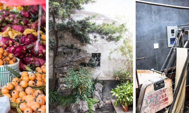 [Shanghai Streetlife #2] eine fabelhafte Nudelmaschine, meditieren im Park und ein Nachmittag in Tianzifang