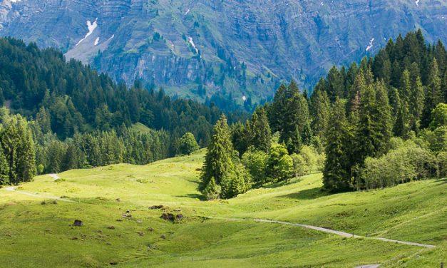 13 Gründe warum es im Bregenzerwald so schön ist und Du unbedingt jetzt hinfahren solltest