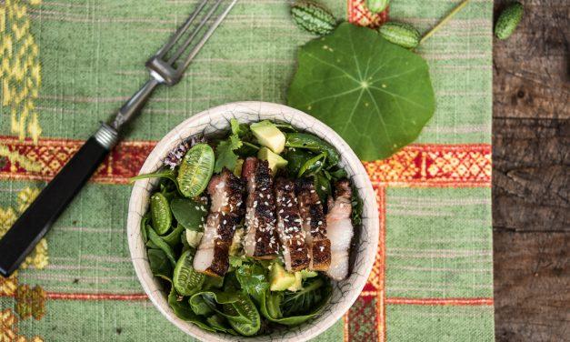 Südamerikanische Nikkei Küche: Soja-Mirin marinierter Schweinebauch auf Wildkräutersalat mit Avocado und Wasabi Vinaigrette