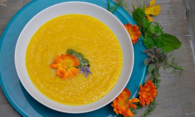 Mit Kraut und Rüben – Möhren-Orangen Suppe mit Möhrenkraut Pesto und Ringelblumen