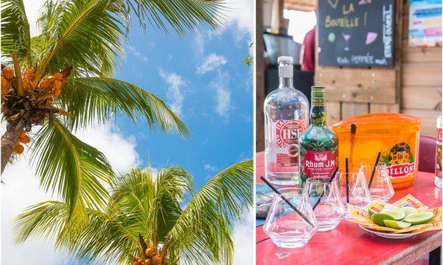 11 Gründe, sofort nach Martinique zu fliegen