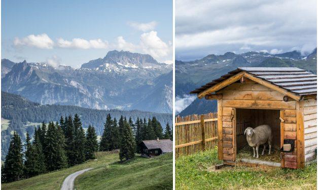 "Sehnsuchtsort Montafon – kulinarische Traditionen und ""Berg-Feeling"" pur"