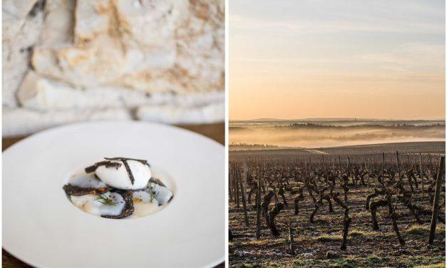 Trüffel vom Amuse bis zum Dessert – ein Trüffelkochkurs auf Château Haute-Serre