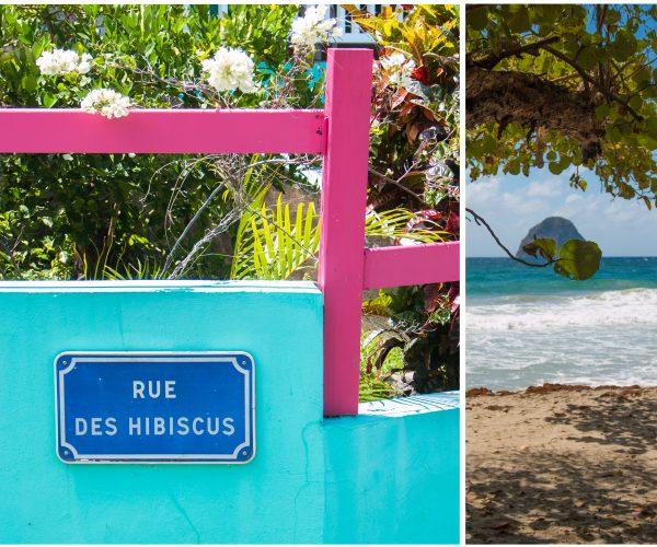 Martinique – Kolibris, weiße Strände und ein kreolisches Huhn